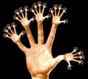 Muitas mãos