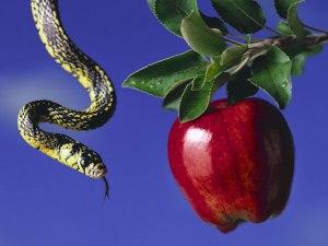 A Maçã e a Serpente