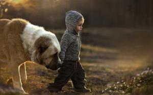 crianca-perda-morte-cachorro-300x186