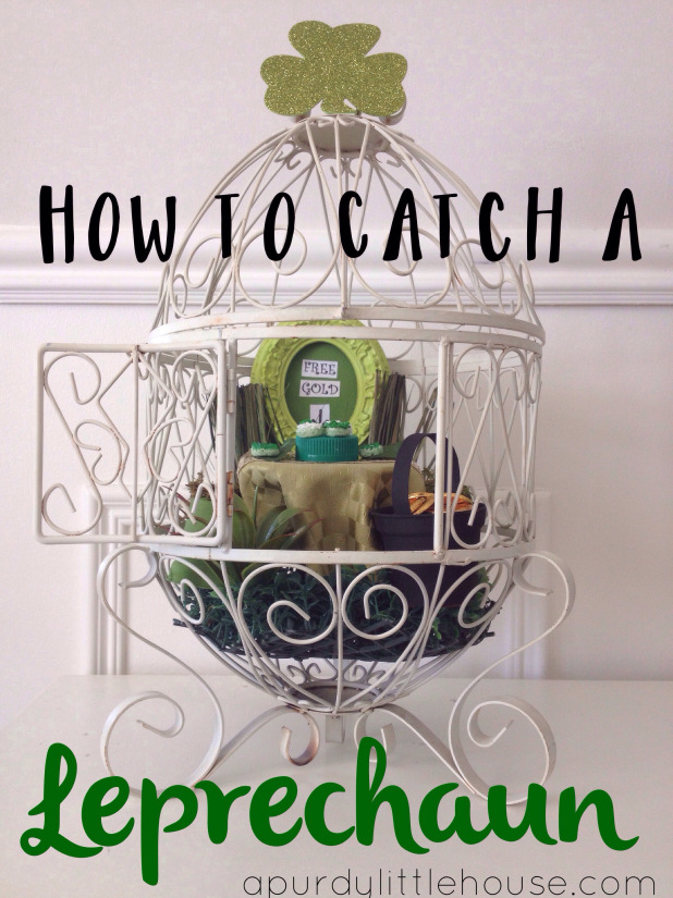 how-to-catch-a-leprechaun-crafts-how-to-seasonal-holiday-decor