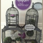 Antique Birdcage