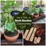 Herb Garden as a Housewarming Gift
