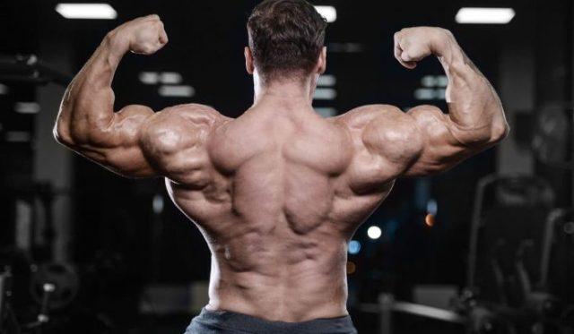 How MK-677 Ibutamoren - Nutrabol Help You Achieve Your Fitness Goals