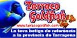 Banner-Tarraco-Ramon-