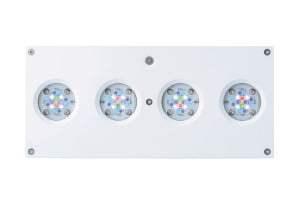 Iluminación LED Hydra 64 HD para acuario marino