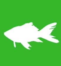 montar acuario dulce, Monta fácilmente un Acuario de Agua Dulce con Aquaforest Freshwater