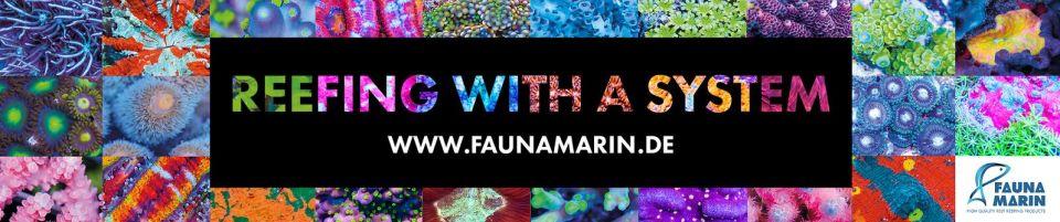 Fauna Marin mini Banner