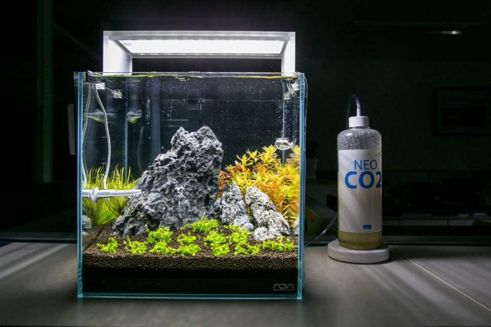 Botella Neo Co2 para acuario plantado