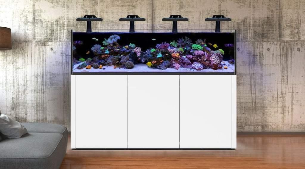 acuario marino completo, Waterbox: Acuario marino completo con sump