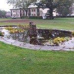 Time to restore this pond