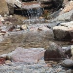 Wildlife pond: Natural stone effect channel