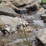 Wildlife pond Bath: Streams & falls can turn a wildlife pond into a water garden