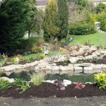 Time to hand this water garden over the the owners - wildlife pond Bath