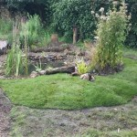 Bog garden and pond edges turfed