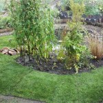Bog garden and frog pond build - Bristol and Bath