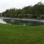 Commercial pond clean water