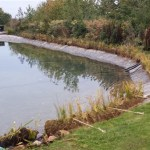 Commercial pond planting solutions