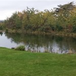 Commercial pond project completed