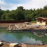 Ponds full and water conditioning