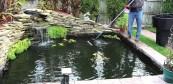 Nettoyage étang
