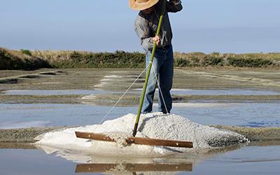 """Résultat de recherche d'images pour """"sel de guerande"""""""
