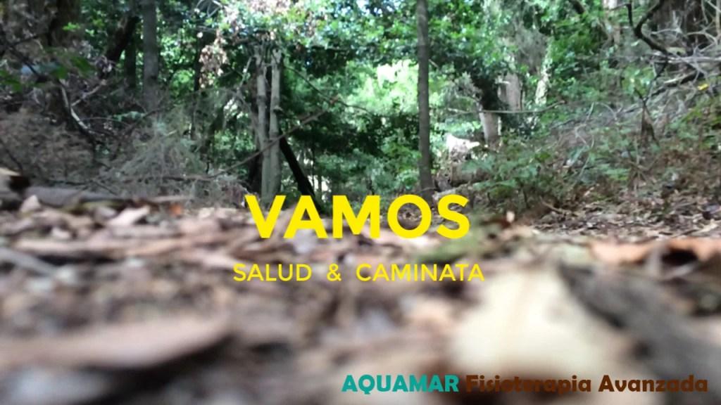 canarias treking