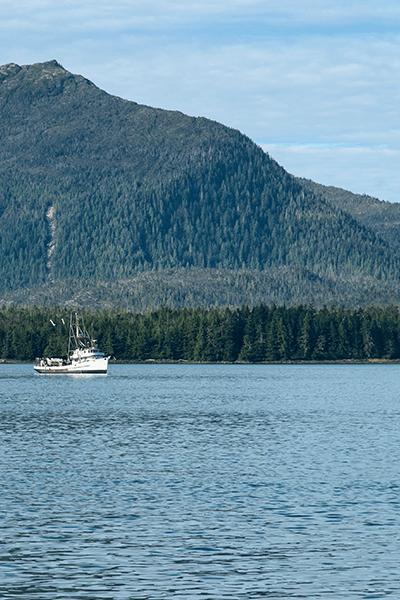 Aquamar Seafood Alaskan Pollock Surimi Fishing