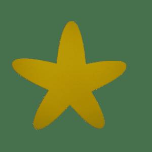 "Chuck the Starfish 36"" Foam Mat   Foam Mats & Swim Aids   Aquamentor"