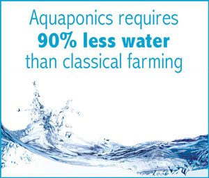 aquaponic requires 90% less water then classical farming