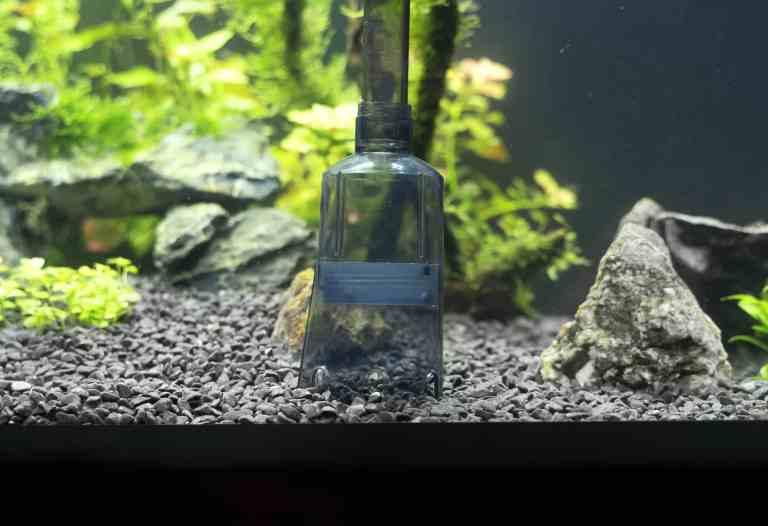 Aquarium vacuum cleaning gravel in fish tank