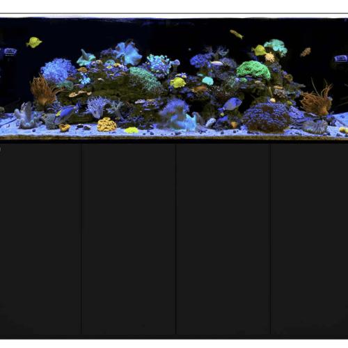 Reef Waterbox Aquariums - 220 gallons