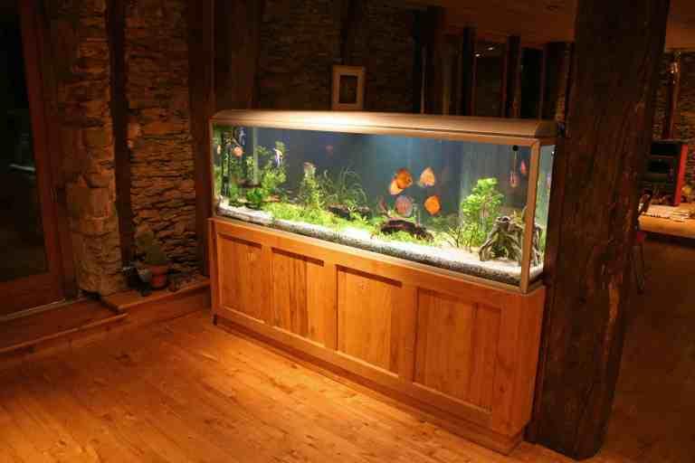 best aquarium stand at night