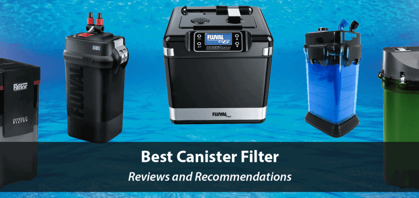 Best Canister Filters 2020 – Aquarium Canister Filters Review and Recommendations