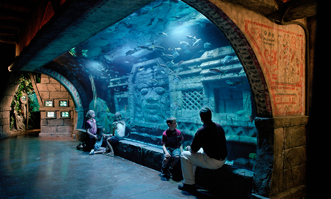 Image Result For Moody Gardens