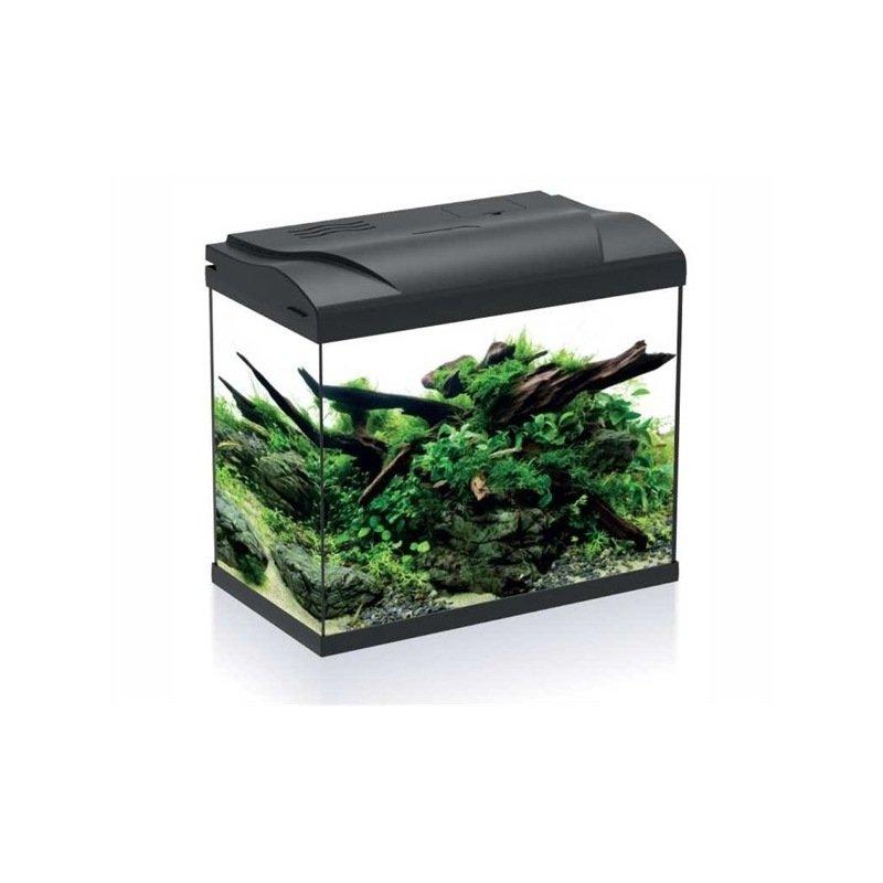 aquarium de 30 litres fourni complet