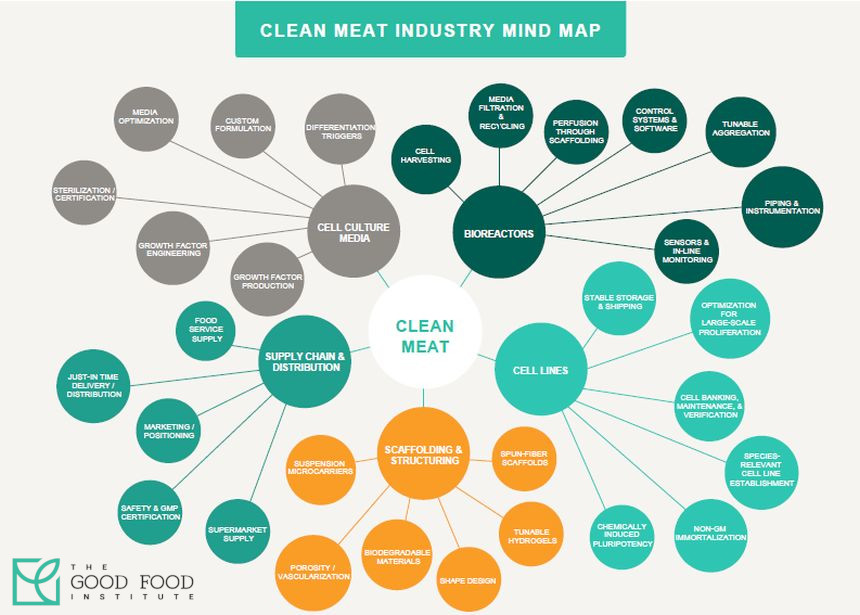 Clean Meat Industry Mind Map