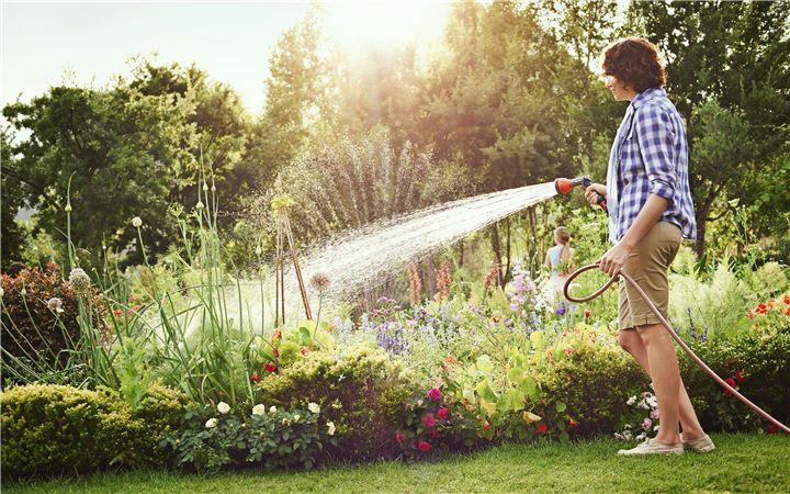 Arroser le jardin avec un tuyau d'arrosage