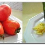 Como Fazer Tomate Seco em Casa (receita rápida e fácil)