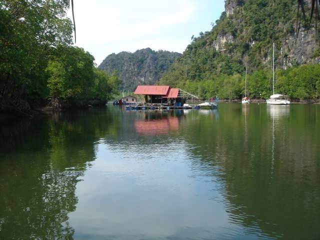 غابات المانجروف وكهوف باتا في جزيرة لنكاوي ماليزيا 1