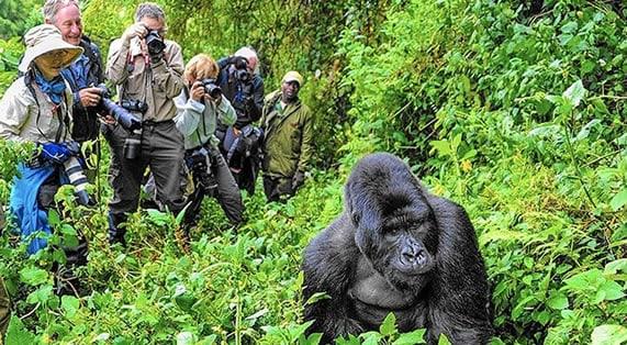 السياحة اوغندا واهم معالمها السياحية