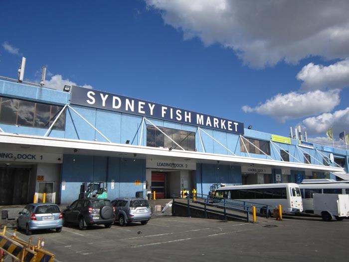 Fish-Market-in-Sydneyسوق السمك في سيدني