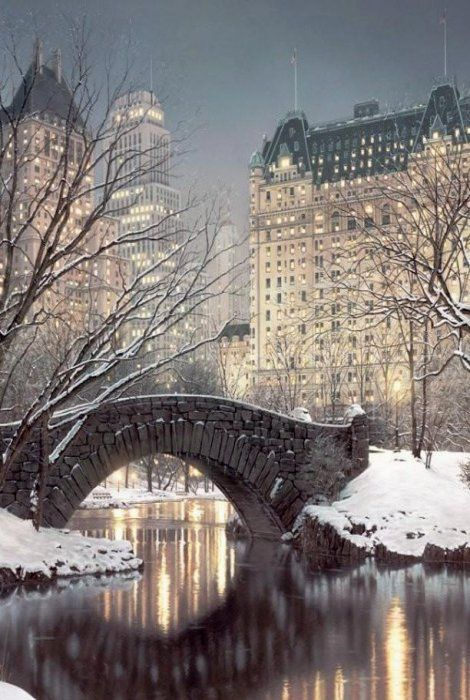 سنترال بارك نيويروك فى الشتاء