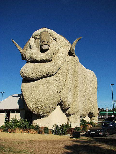 Big Merino, NSW
