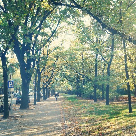 Krasinski حدائق
