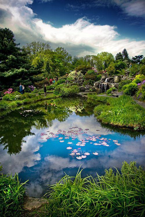 حدائق أوسلو النباتية