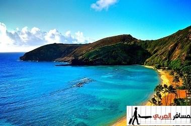 هاواوي