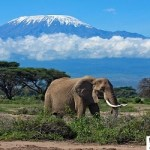 صور أجمل محميات طبيعية في أفريقيا لاجمل رحلات سفاري
