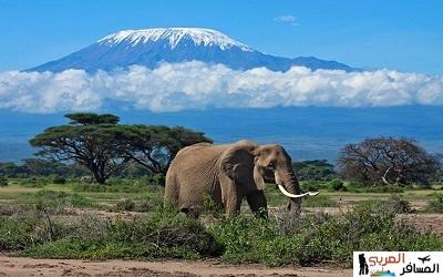 اهم محميات طبيعية في افريقيا