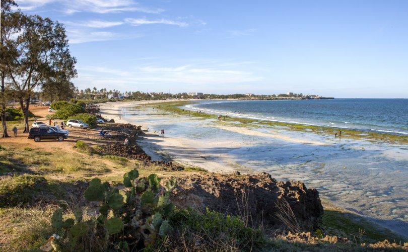 خليج المحار