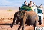 السياحة في افريقيا
